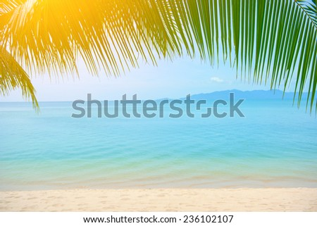 Palm tree leaves over luxury beach - stock photo