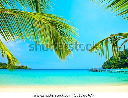 Palm tree leaves over the sand and turquoise sea - stock photo