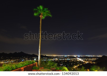 Palm tree moving in the wind with city lights of Phoenix at night. - stock photo