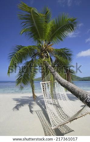 Palm Tree with Hammock on beach, Mahe', Seychelles - stock photo