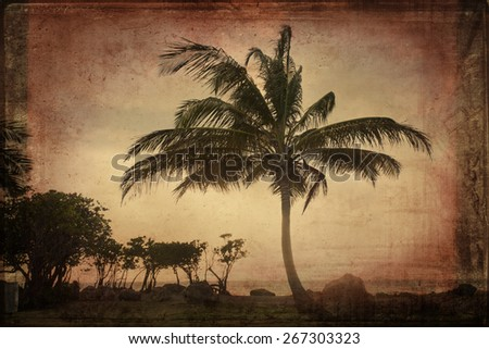 Palm tree with vintage texture effect - stock photo