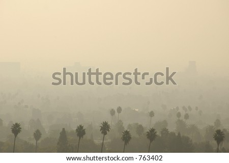 Palm Trees and distant buildings in Los Angeles smog. - stock photo