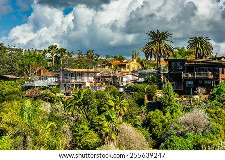 Palm trees and houses on a hill in San Clemente, California. - stock photo