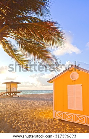 Palm trees and lifeguard house on a beautiful sunny summer afternoon in Hollywood Beach near Miami Florida with ocean and blue sky in the background - stock photo