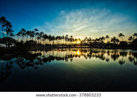 Palm trees and sunset of the sky, reflection, Hawaii, - stock photo