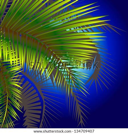 palm trees at night . Raster - stock photo
