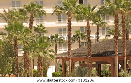 Palm Trees at Resort - stock photo