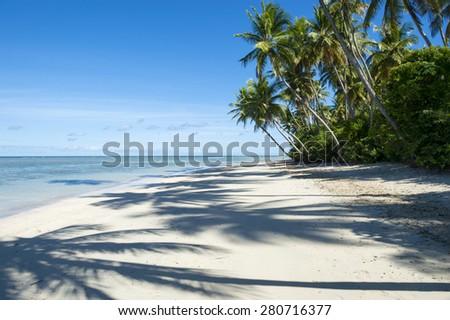 Palm trees cast shadows on wide remote tropical Brazilian island beach in Bahia Nordeste Brazil - stock photo