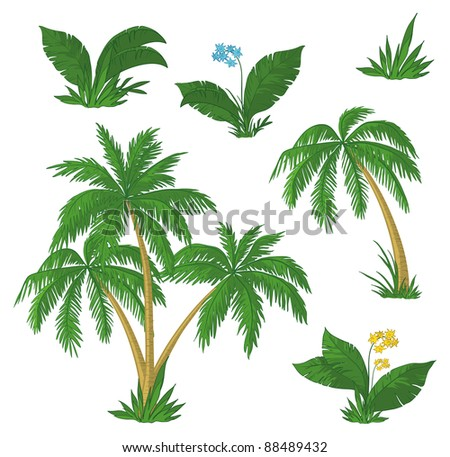 Palm trees, flowers and green grass on white background - stock photo
