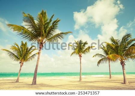 Palm trees grow on empty beach. Coast of Atlantic ocean, Dominican republic. Vintage toned effect, instagram style color correction - stock photo