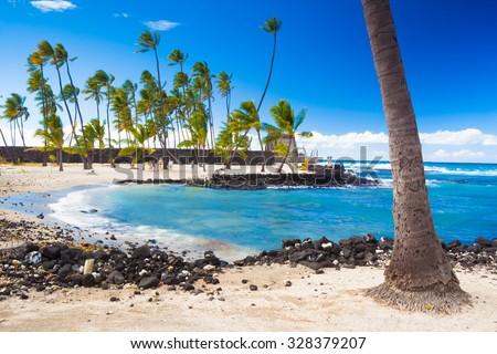 Palm trees growing on ancient Hawaiian site Pu'uhonua O Honaunau National Historical Park on Big Island, Hawaii - stock photo