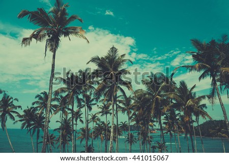 Palm trees on a hill at tropical beach, vintage toned and retro color stylized - stock photo