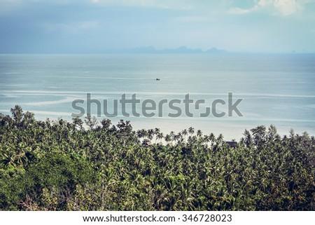 palm trees on coastline with horizon and dramatic sky - stock photo