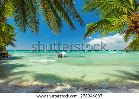 Palm trees on luxury exotic beach - stock photo