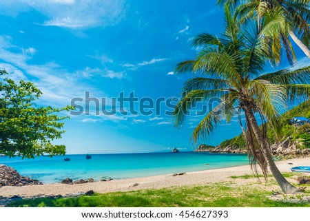 Palm trees on luxury exotic beach in tropical island, Koh tao, Thailand - stock photo