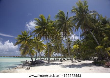 Palm trees on the beach of tropical Bora Bora, French Polynesia. - stock photo