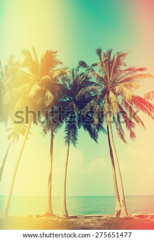 Palm trees on the beach with old film light leaks, vintage color stylized - stock photo