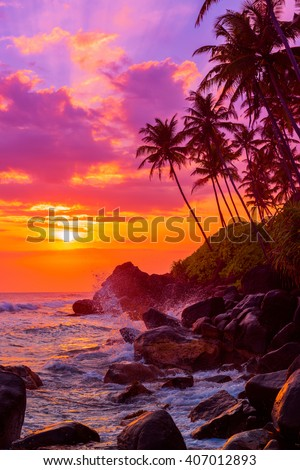 Palm trees on tropical beach at sunset - stock photo