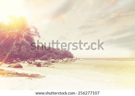 Palm trees on tropical beach. Instagram effect (vintage) - stock photo