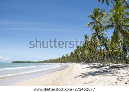 Palm trees on wide remote tropical Brazilian island beach in Bahia Nordeste Brazil - stock photo