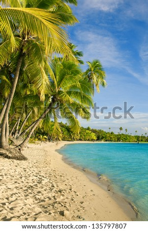 Palm trees over tropical lagoon at Fiji Islands - stock photo