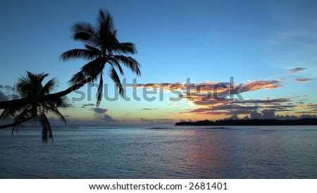 Palm trees over water at sunset - stock photo