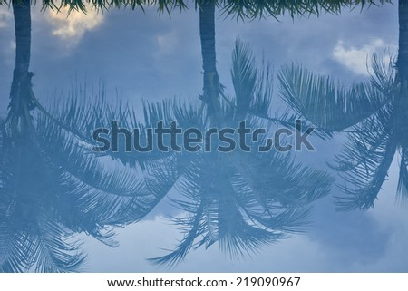 Palm trees reflection on turquoise pool water - stock photo