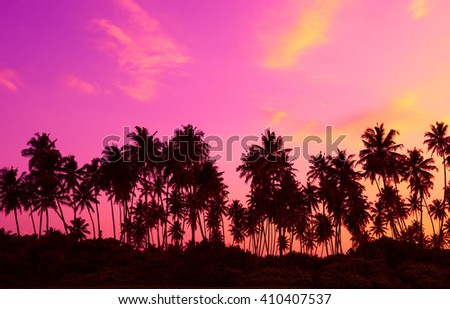 Palm trees silhouettes on tropical beach at twilight - stock photo