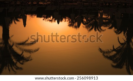 Palm Trees Silhouettes Reflection in the Water at Sunset. Palm Trees Summer Sunset. Idyllic tropical sunset. Travel Destination. Summer Resort. - stock photo