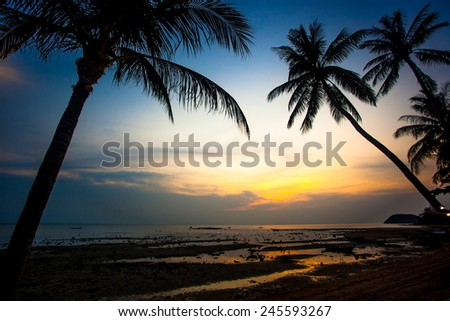 Palm trees sunset on Koh Samui beach - stock photo