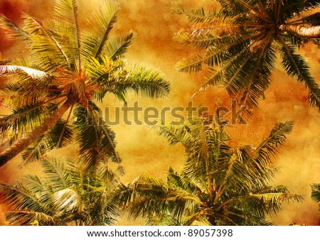 palm trees - vintage stylized floral picture with patina texture - stock photo