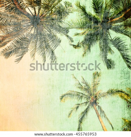 Palm trees.Vintage tone. - stock photo