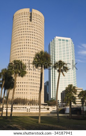 Palms and skyscrapers in Tampa - stock photo