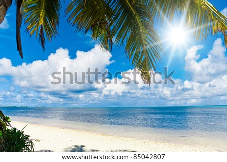 Palms and Sun Tropical Landscape - stock photo