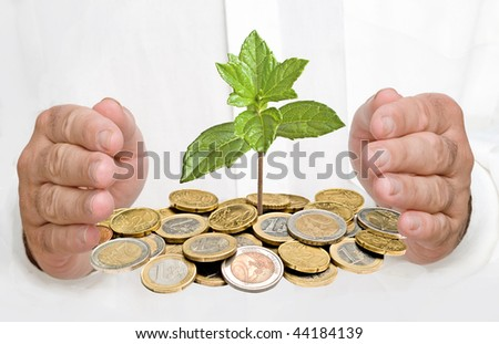 Palms protecting a tree growing from pile of coins - stock photo