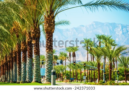 Palms Road Coachella Valley. Highway 111 in Indian Wells, California, USA. - stock photo