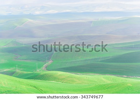 Palouse rolling hills in sunrise. The view from top of Steptoe Butte State Park. Natural landscape background - stock photo