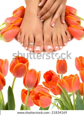 Pampered feet and hands with beautiful tulips - stock photo