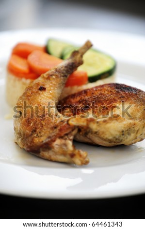 Pan fried pheasant with a golden crust - stock photo