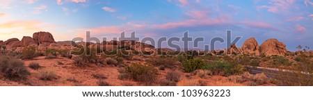 Panorama landscape of Joshua Tree National Park at sunset, USA. Driving road. - stock photo