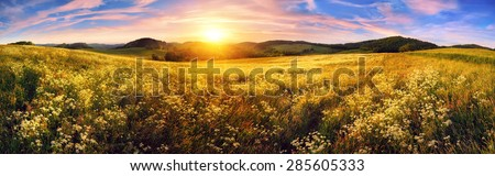 Panorama of a colorful sunset on beautiful meadow, wide format rural landscape with vibrant colors - stock photo