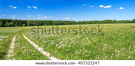 panorama of a summer landscape with the field and the blue sky - stock photo