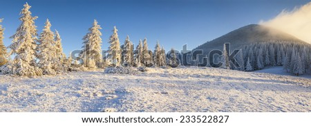 Panorama of the frosty morning in the winter mountains. - stock photo