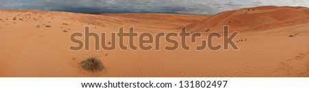 Panorama of the Rub' al Khali desert in Oman on an overcast day - stock photo