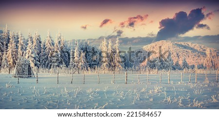Panorama of the winter sunrise in the mountains - stock photo