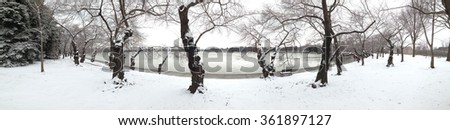 Panorama of Washington DCs famous cherry blossom trees on the banks of the Tidal Basin covered in fresh snow as Washington gets another blast of winter weather. - stock photo