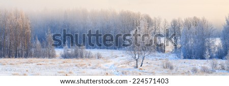 Panorama of winter forest in hoarfrost at sunrise with dense fog. - stock photo
