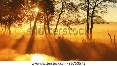 Panorama rays of the rising sun - stock photo