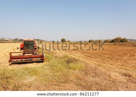 Panorama view of lowlands of wheat in Portugal during autumn - stock photo