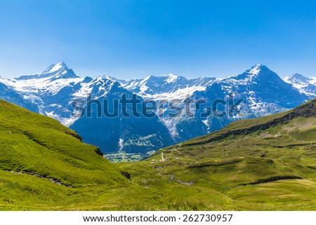 Panorama view of Schreckhorn, Fiescherwand, Eiger, the famous swiss alps near Grindelwald, Switzerland - stock photo